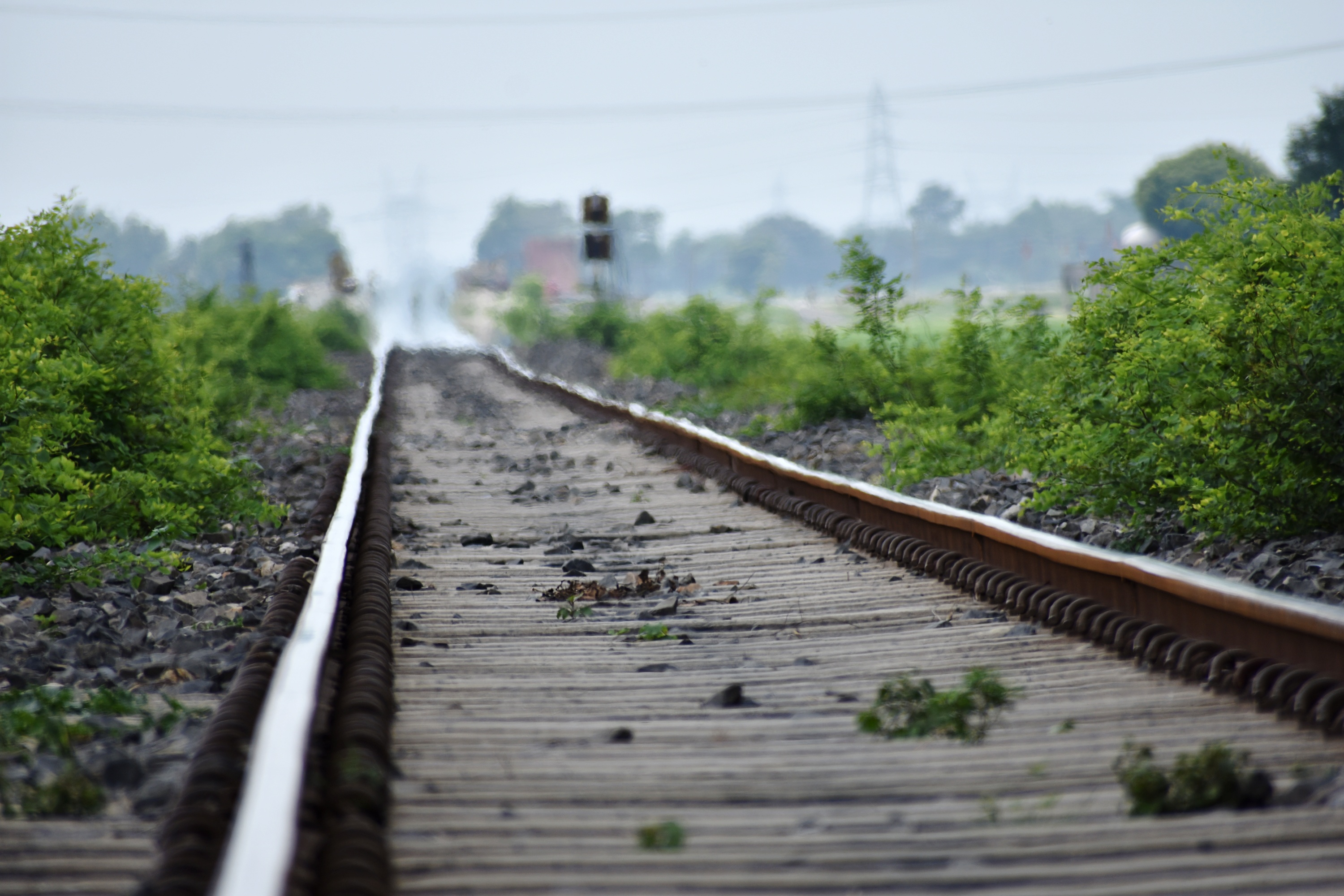 A Politician Vowed To Get This Man 'Killed'. The Man Was Found Dead on Railway Tracks.