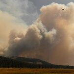 California's Wildfires Had an Invisible Impact: High Carbon Dioxide Emissions
