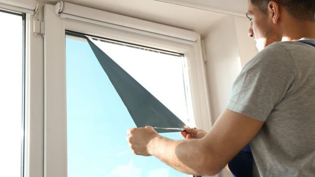 How to Tint the Windows in Your Home (and Why You Might Want To)